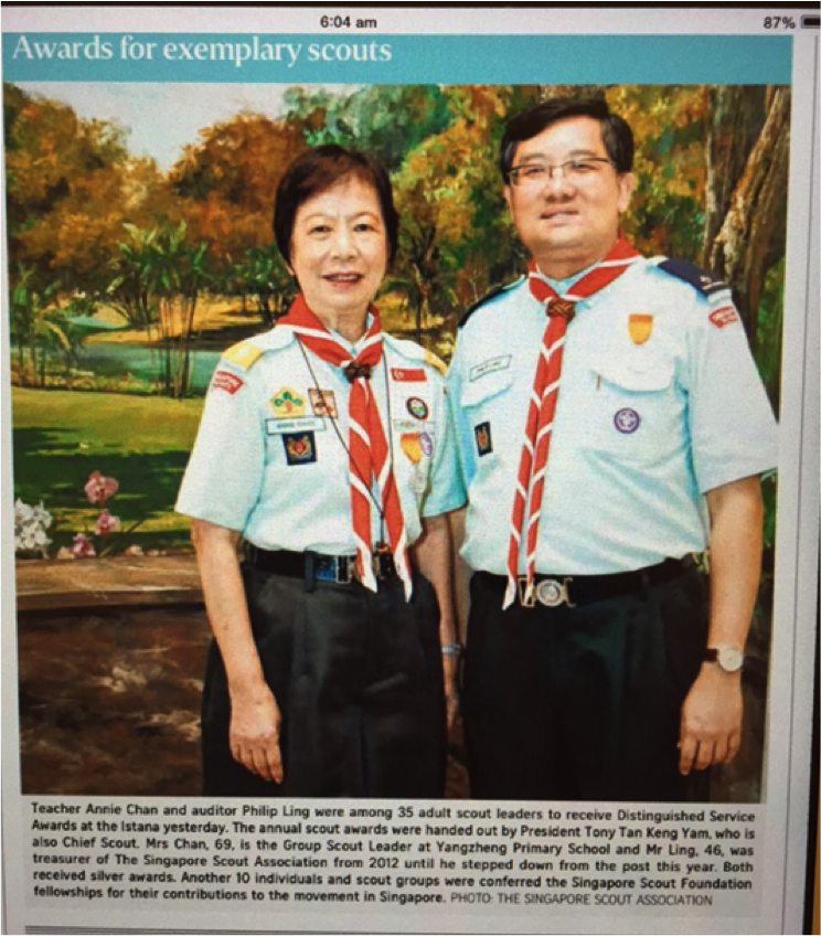 Distinguished Service Scout Award – Silver Award  .png